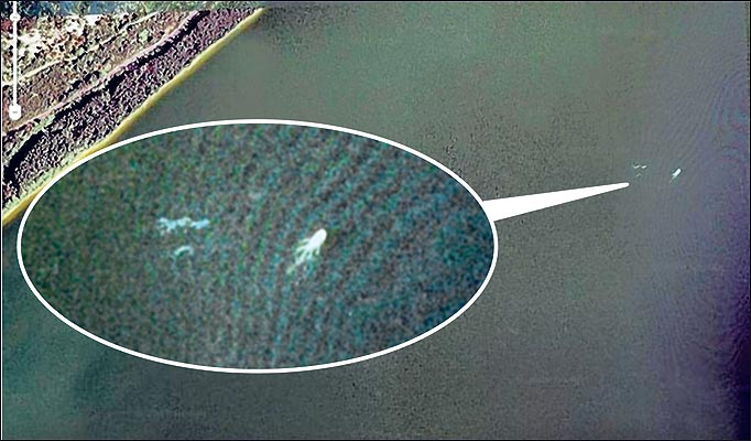 Loch ness monster caught on google maps